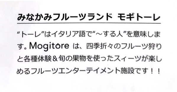 mogitore2.jpg